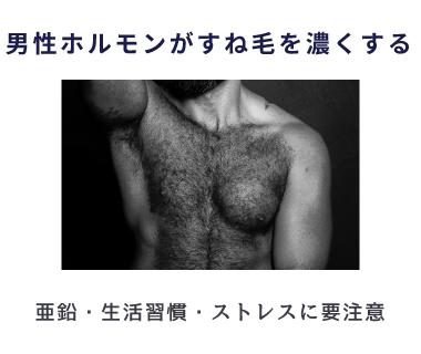 亜鉛の摂りすぎやタバコなどの生活習慣、精神的・身体的ストレスで男性ホルモンが増えるとすね毛が濃くなる