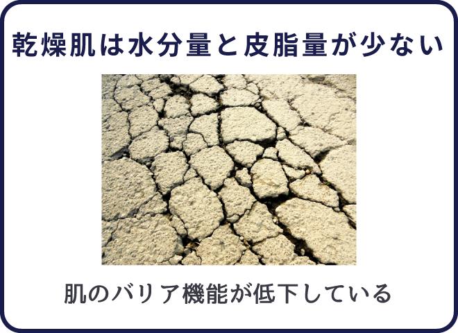 乾燥肌とは肌のバリア機能が低下している
